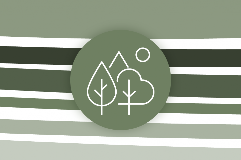 Re-thinking local: climate change and air quality - green stripes on a white background with a green icon of trees in the foreground